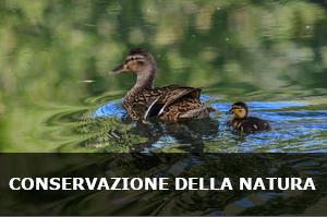 Conservazione e tutela della biodiversità