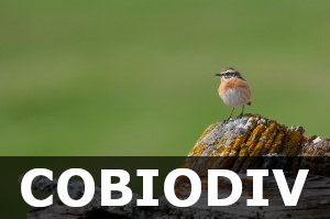 Cobiodiv